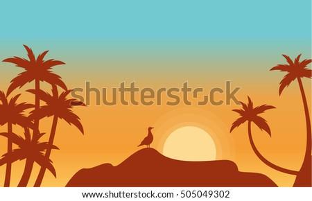 at sunrise bird on rock scenery
