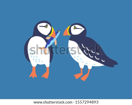Atlantic puffins flat vector illustration. North fauna, wildlife. Red Book bird. Seafowl with fish in beak. Arctic shore seabird, ocean coast inhabitants isolated on blue background.