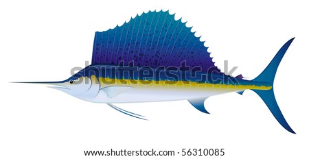 """Atlantic Sailfish (Istiophorus albicans) saltwater fish.  """"Full compatible. Created with gradients."""""""