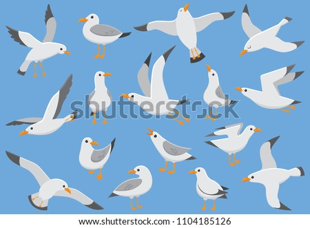 Atlantic seabird fly at sky. Beach seagull at quay. Sea birds, cute gull on blue background cartoon isolated vector illustration set