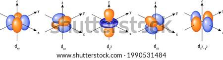 Atomic orbitals: d orbitals structure in 3D vector Foto stock ©