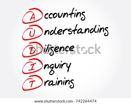 audit   accounting