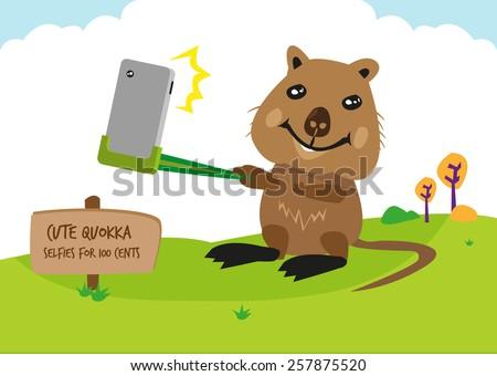 australia's quokka  a mammal
