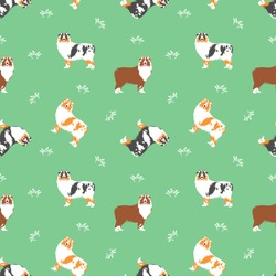 Australian Shepherd or Aussie seamless pattern background. with grass. Cartoon dog puppy background. Hand drawn childish vector illustration. Great for wallpaper, textile design.