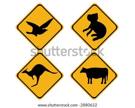 Australian wildlife koala bear, kangaroo, bird and cow