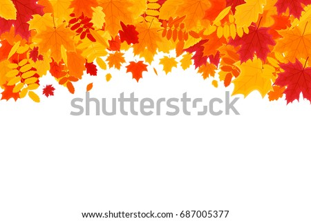 autumn background colorful