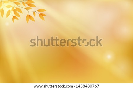 autumn background with bokeh