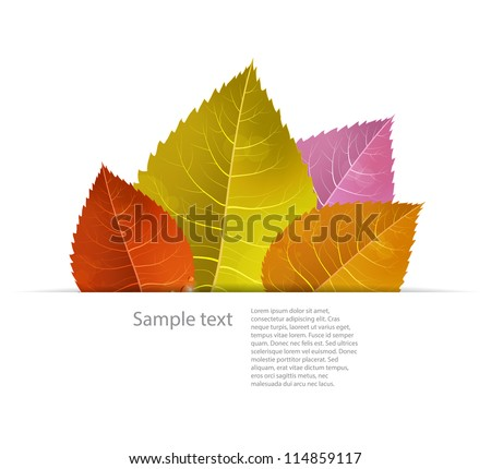 Autumn background with colored leaves in a paper fold. Seasonal EPS10 vector image.