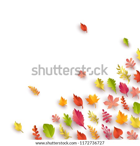 Autumn background with colorful maple and oak leaves. Autumnal foliage vector illustration. Paper style