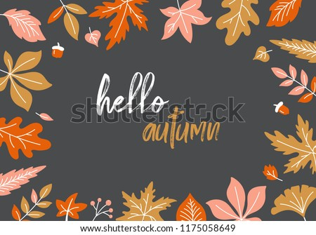 Autumn background with fall leaves and typography  design. Vector illustration
