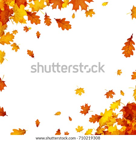 autumn background with golden