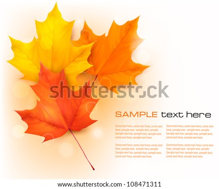 Autumn background with leaves. Back to school. Vector illustration