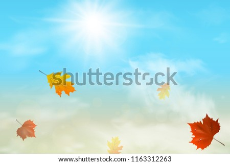 autumn background with multi