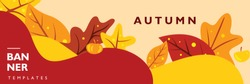 Autumn banner template for festival, event, party, and concert. Poster layout with fall maple leaves on colorful background. Vector illustration for publication