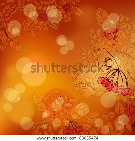 autumn blurry background