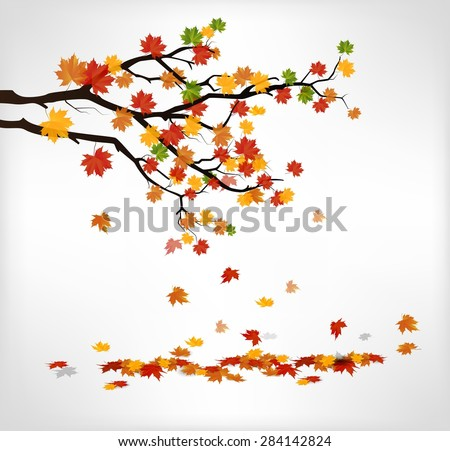 autumn branch with falling