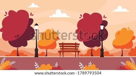 autumn city park with trees