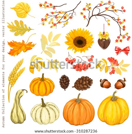 autumn collection of elements