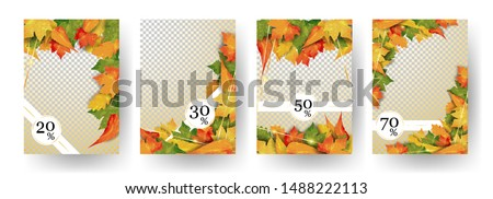 autumn colorful shine leaves