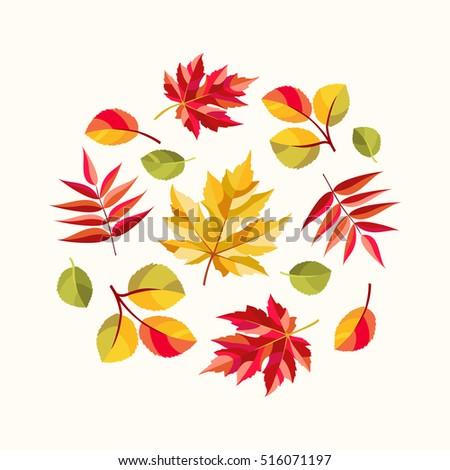 Autumn composition. Colorful leaves of maple, rowan and aspen. Fall season theme. Vector illustration.