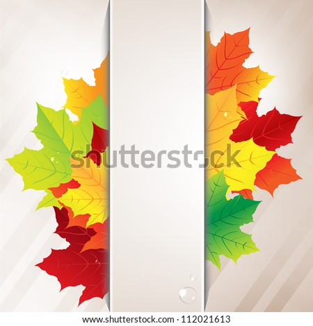 autumn composition from leaves