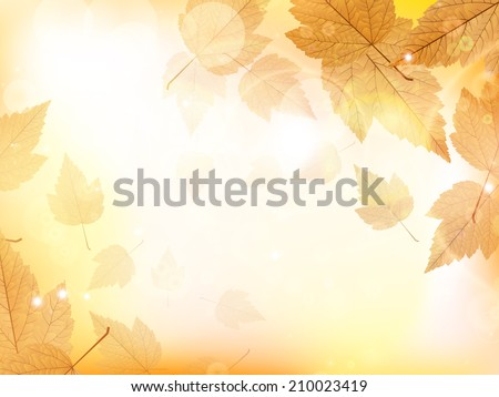 Autumn design background with leaves falling from the tree. EPS10