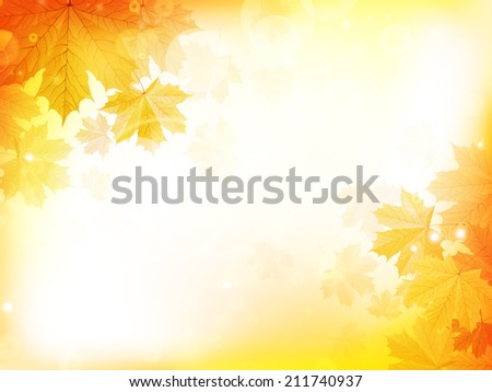 autumn design background with
