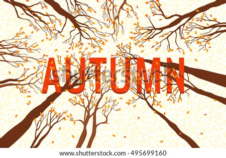 autumn design illustrations