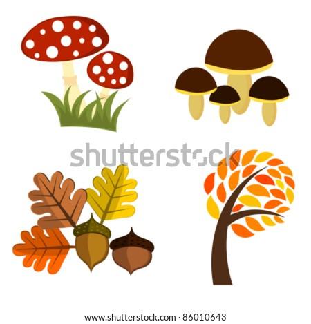 Autumn elements for design. Vector illustration - stock vector