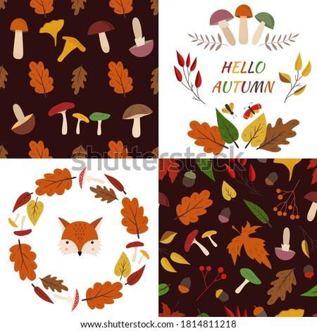 autumn fall set of 2 seamless