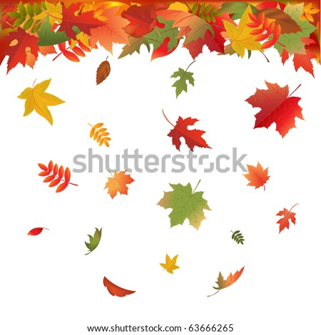 Autumn Falling Leaves, Isolated On White Background