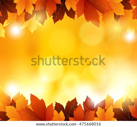 autumn flowers with orange