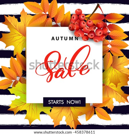 Autumn foliage vector sale banner  with autumn leaves and rowan berries. Template Vector. #458378611