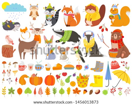 autumn forest animals fall