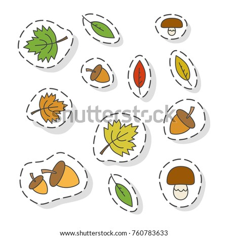 Autumn forest elements stickers or icons set. Colorized tree leaves, acorn and mushroom isolated flat vectors outlined with dotted line. Autumn defoliation and forest harvest illustration
