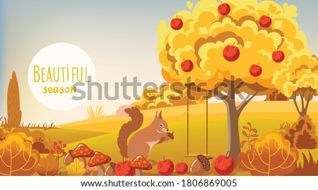 autumn forest squirrel eating