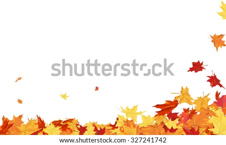 Autumn  Frame With Blowing Maple Leaves  Over White Background. Elegant Design. Vector Illustration.