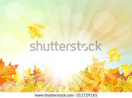 autumn  frame with falling