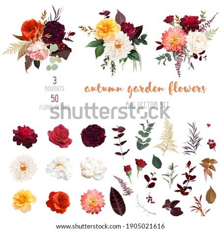autumn garden vector design big