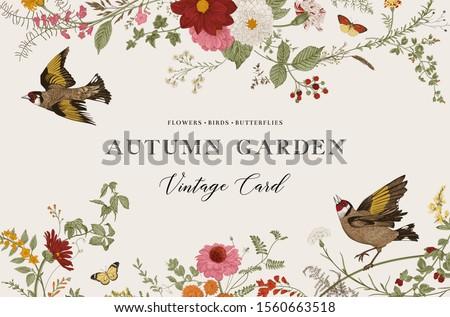 Autumn Garden. Vector horizontal card. Vintage floral elements. Flowers, birds, butterflies