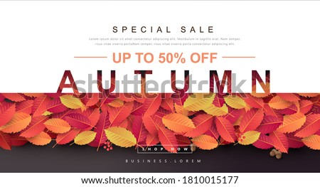 Autumn Gift promotion Coupon banner background. Elegant Autumn Voucher Design.