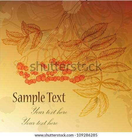 Autumn golden background with hand-drawn rowan branch