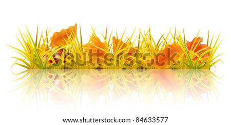 autumn grass  10 eps