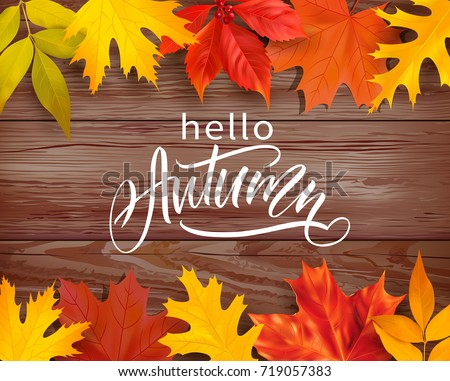 Autumn greeting background with colored leaves border and lettering. Vector illustration.