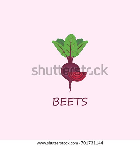 Autumn harvest. Vector beets isolated on background. Red beetroot whole, sliced. Natural healthy food.