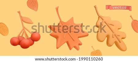 Autumn icon set. Red rowan, orange maple leaf, yellow oak leaf. 3d vector plasticine art objects