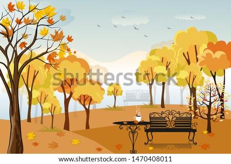 autumn landscape in city park