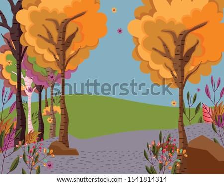 autumn landscape trees leaves
