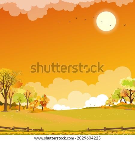 autumn landscape wonderland