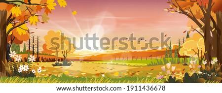 autumn landscapes of
